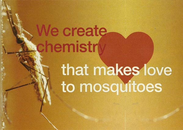 mosquito postcard